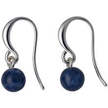 Silver & Blue Earrings