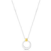 613254500-silver-vermeil-origen-necklace