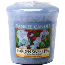 samplers-garden-sweet-pea