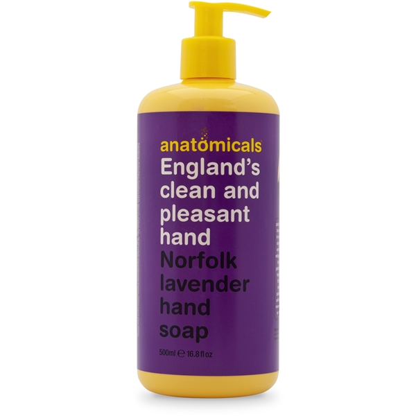 England's Clean and Pleasant Hand Hand Soap