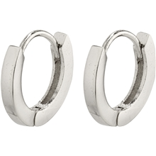 26203-6033 Arnelle Earrings Silver Plated