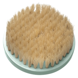 SP BB2 Replacement Brush For BB1000 Natural