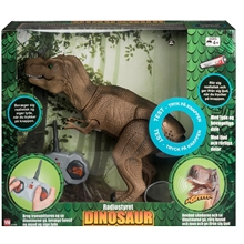 Dinosaur Walk & Sound
